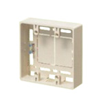 Mold Switch Box - (for 2)