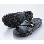 ASPURE ESD Slippers