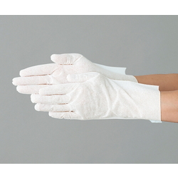Clean Gloves (SL Type)