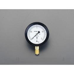 Sealed Pressure Gauge EA729DR-20