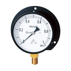General Vertical Type Pressure Gauge, Round Flange (B Type)