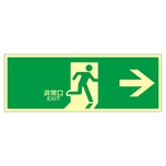 "High Brightness Phosphorescent Emergency Exit Sign ""Emergency Exit →"" Luminescent LE-1801"