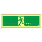 "High Brightness Phosphorescent Emergency Exit Guidance Sign ""Emergency Exit"" ASN804"