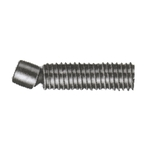 Socket Driven Swivel Screw