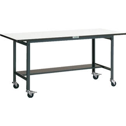 Light Work Bench with Casters Average Load (kg) 100