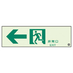 Emergency Exit Guidance Indicator