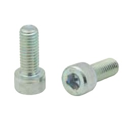 20/30/40 Series Bolt with Hex Socket CSB
