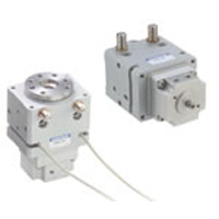Drive Equipment Swing Actuator Rotary Actuator Vane Type RAG Series