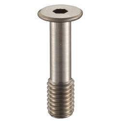Hex Socket Head Ultra Low Head Fall Prevention Screw_SSCHS