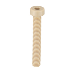 PEEK (Polyetheretherketone)/Low Head Bolt with Hexagonal Socket Head