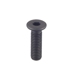 Hex Socket Extra Low Head Cap Screws