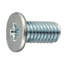 Extra-Low Phillips Head Screw (AHN)