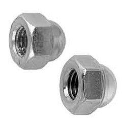 Cap Nut (Import)