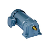 SG-P1 Single Phase Gear Motor